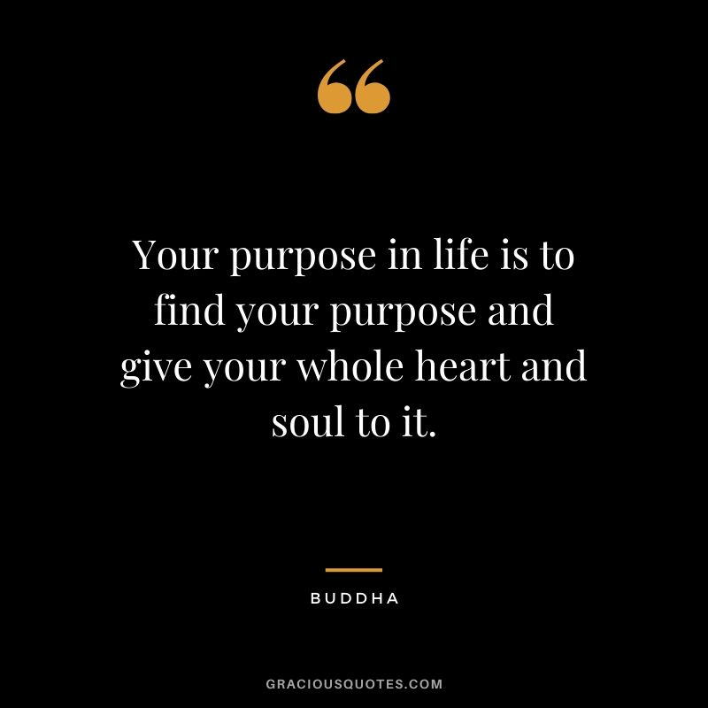 Your purpose in life is to find your purpose and give your whole heart and soul to it. - Buddha