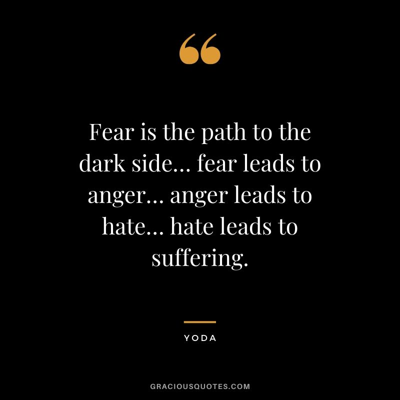 Fear is the path to the dark side… fear leads to anger… anger leads to hate… hate leads to suffering.