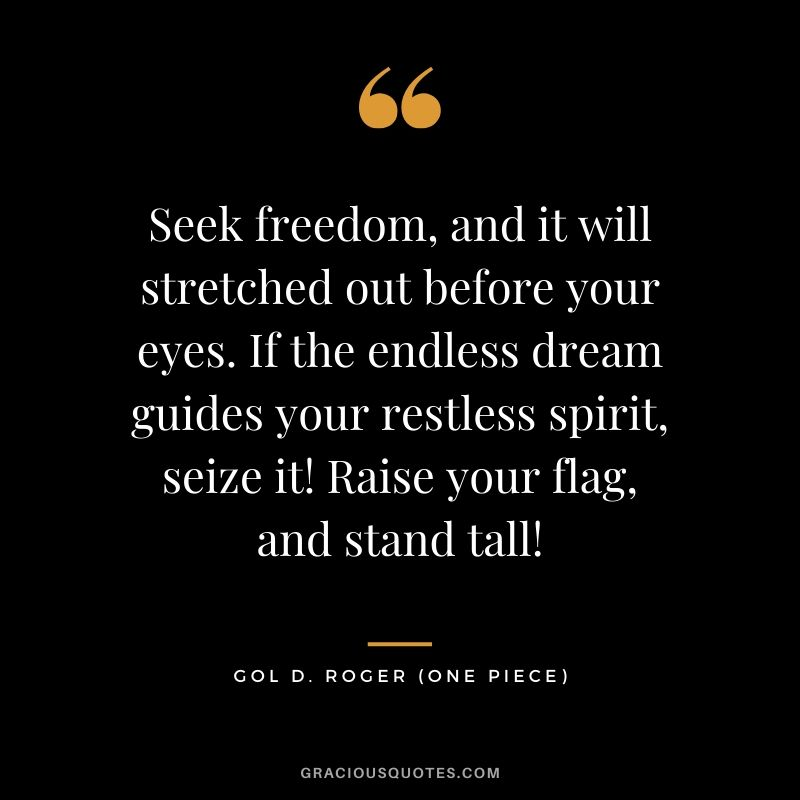 Seek freedom, and it will stretched out before your eyes. If the endless dream guides your restless spirit, seize it! Raise your flag, and stand tall! - Gol D. Roger