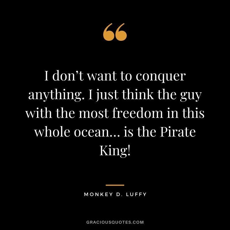 I don't want to conquer anything. I just think the guy with the most freedom in this whole ocean… is the Pirate King!