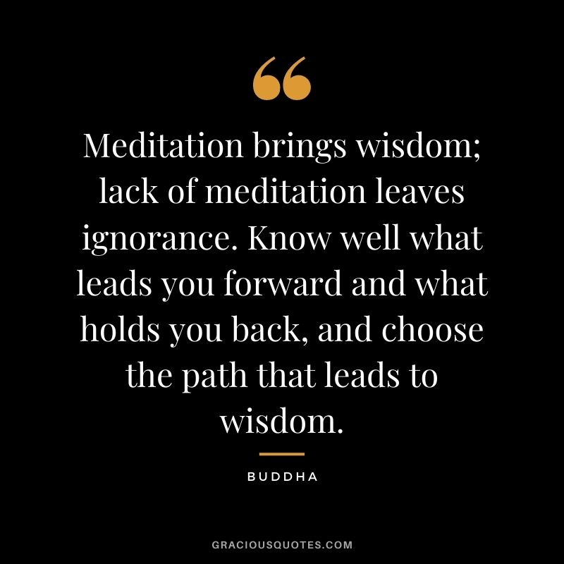 Meditation brings wisdom; lack of meditation leaves ignorance. Know well what leads you forward and what holds you back, and choose the path that leads to wisdom. - Buddha
