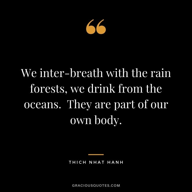 We inter-breath with the rain forests, we drink from the oceans.  They are part of our own body. - Thich Nhat Hanh