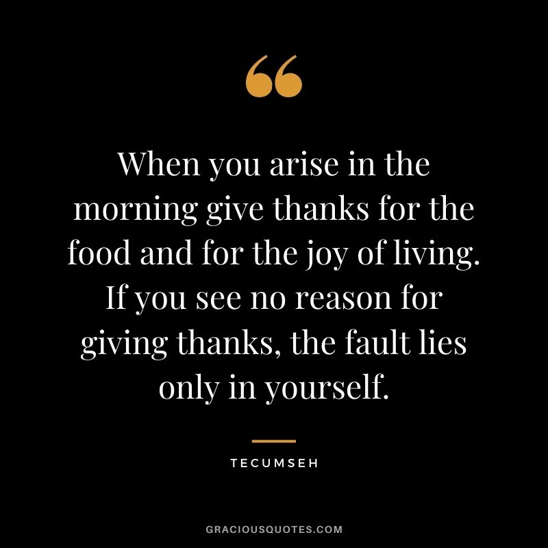When you arise in the morning give thanks for the food and for the joy of living. If you see no reason for giving thanks, the fault lies only in yourself. - Tecumseh